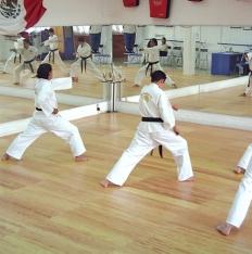 SFR  Martial art mats